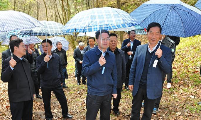 刘长根副省长深入小陇山林区调研指导工作